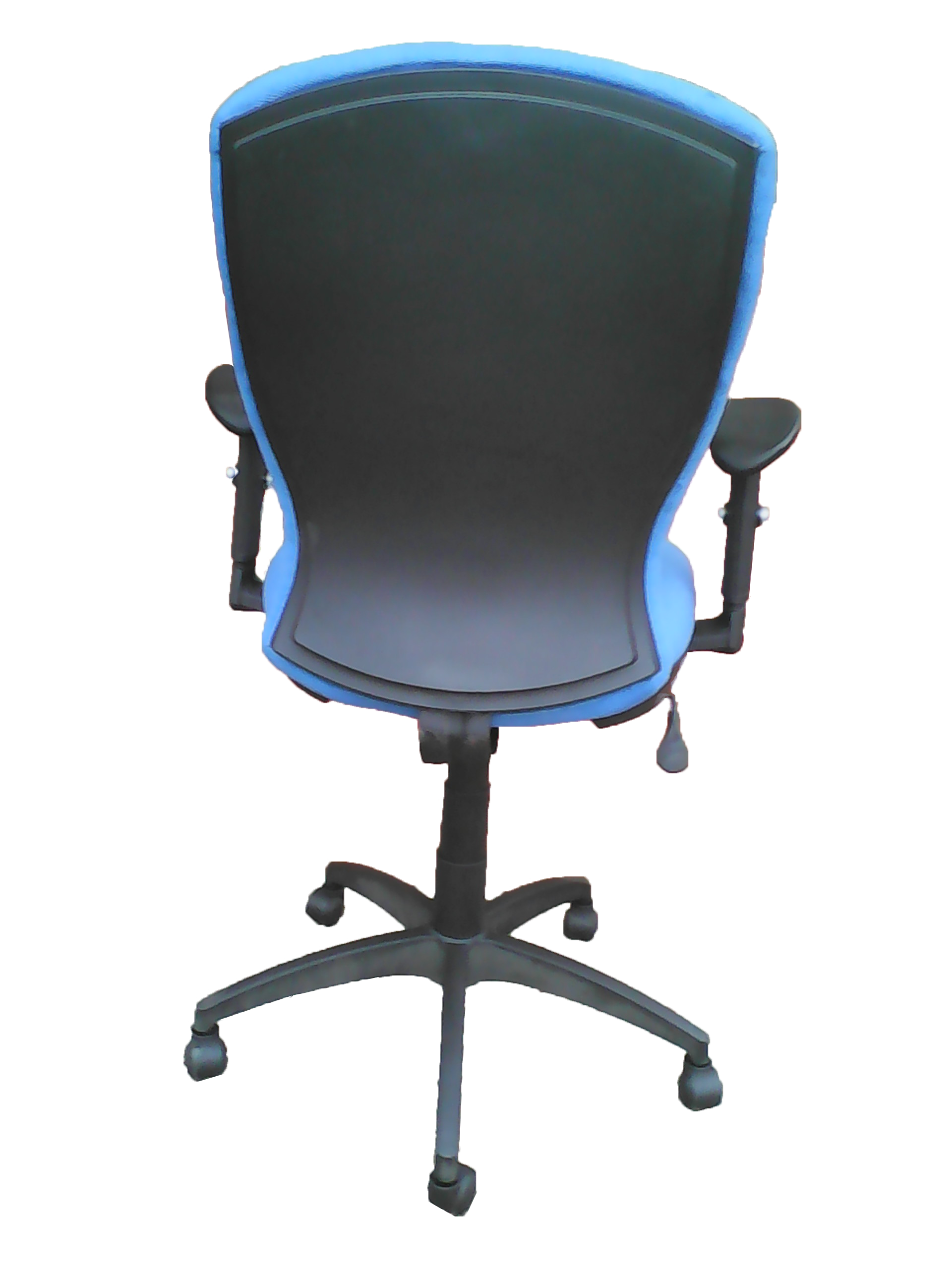 A10021h Blue Computer Office Chair Back